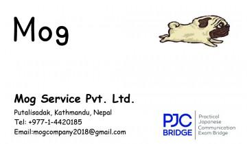 PJC Bridge